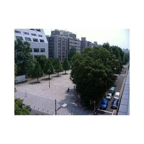 コシノパークサイドビル / 905 部屋画像7