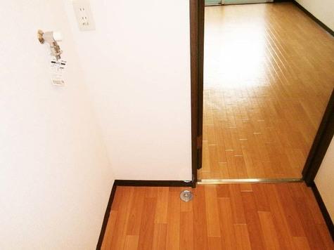 尾山台 5分マンション / 203 部屋画像7
