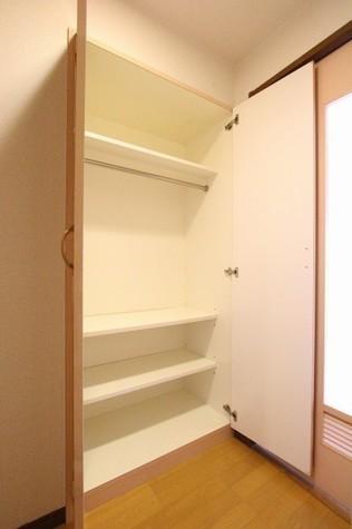 参考写真:廊下収納(10階・別タイプ)