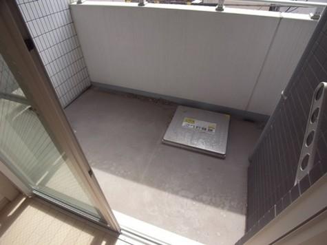 ガーラプレイス新宿御苑 / 11階 部屋画像8