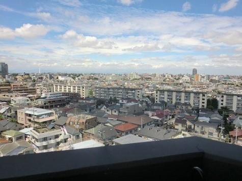 フェニックス笹塚駅前 / 11階 部屋画像8
