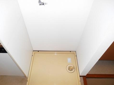 カーサヴェルデ / 1階 部屋画像8
