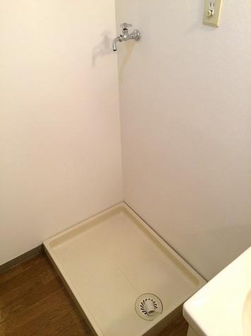 パストラル野沢壱番館 / 302 部屋画像8