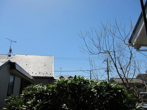 不動ハイツ / 207 部屋画像8