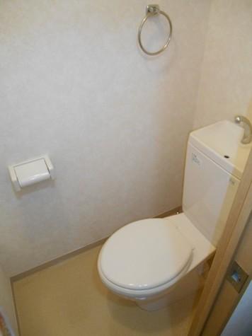 クリーンホームツルオカ / 2階 部屋画像8