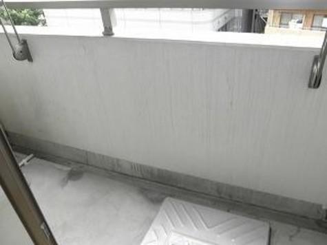カスタリア新宿御苑 / 12階 部屋画像8