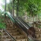 中根公園まで597m