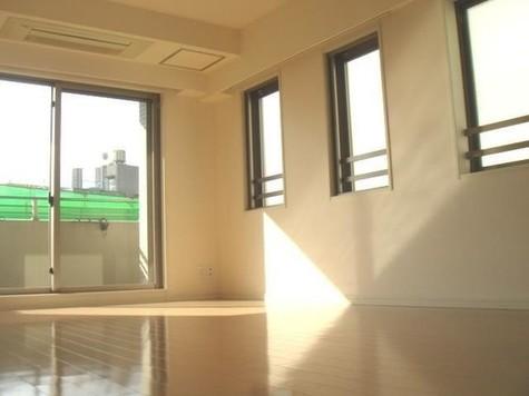 レジディア赤坂 / 209 部屋画像9
