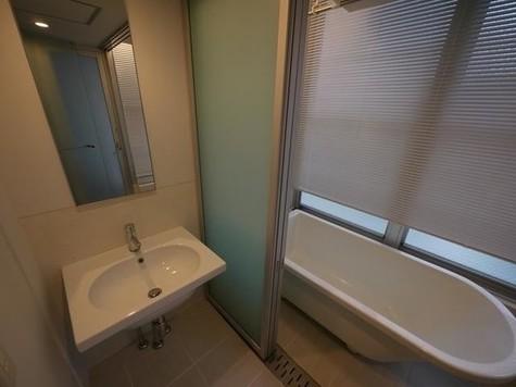 ベルメゾン南麻布grand / 206 部屋画像9