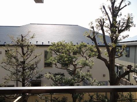 ジョイフル自由が丘 / 309 部屋画像9