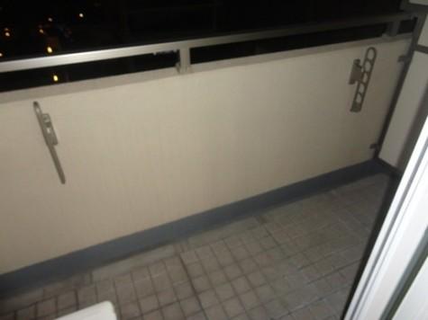 エコロジー豊洲プロセンチュリー / 6階 部屋画像9