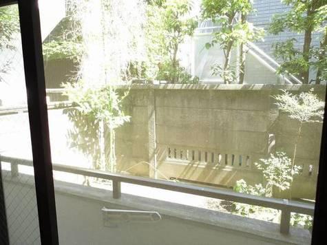 サンシェール / 101 部屋画像9