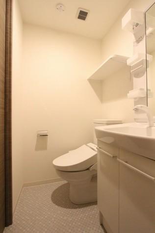 参考写真:サニタリールーム(1階・別タイプ)