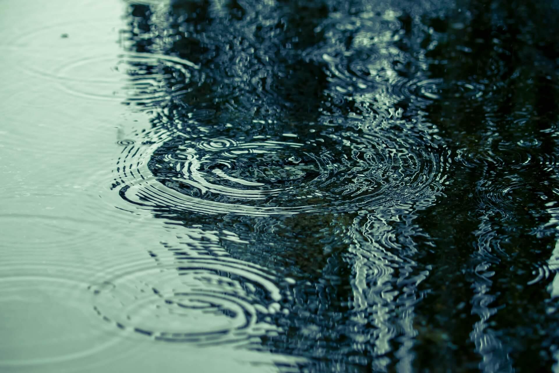 釣りをしたいけど雨…雨の日の釣りって実際どうなの?で工夫したいポイント等をご紹介します!