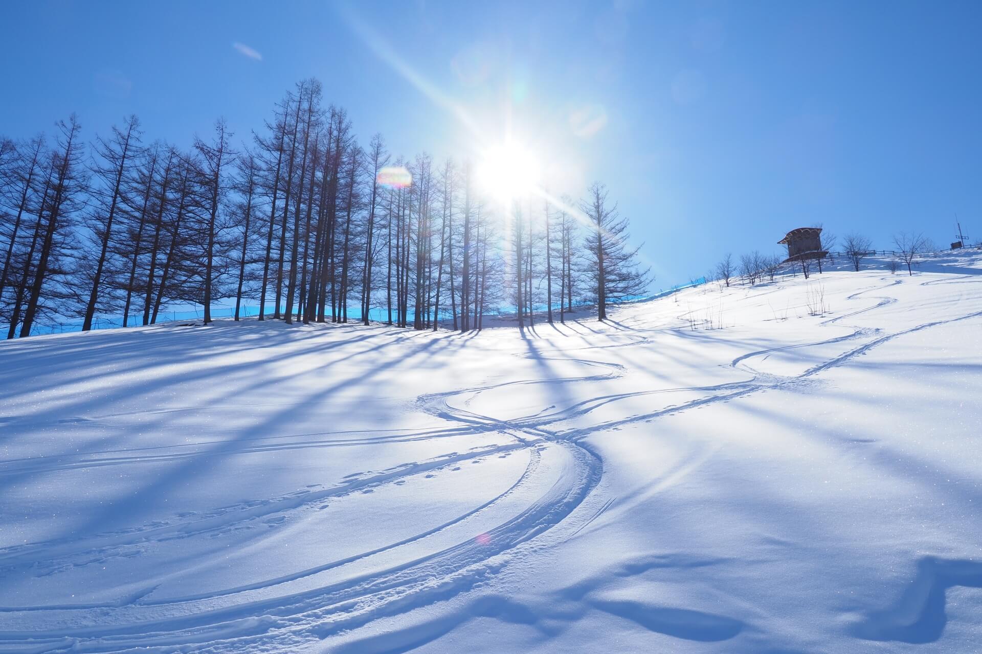 お気に入りのスキー板を買ったらスキーケースにもこだわろう