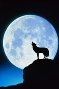 神秘的な月
