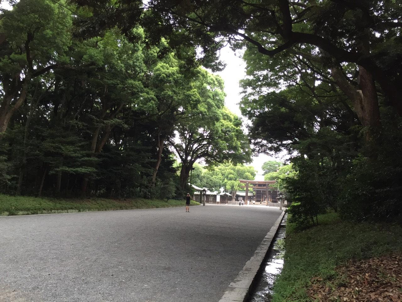 【日本のすがた④】自然信仰の民