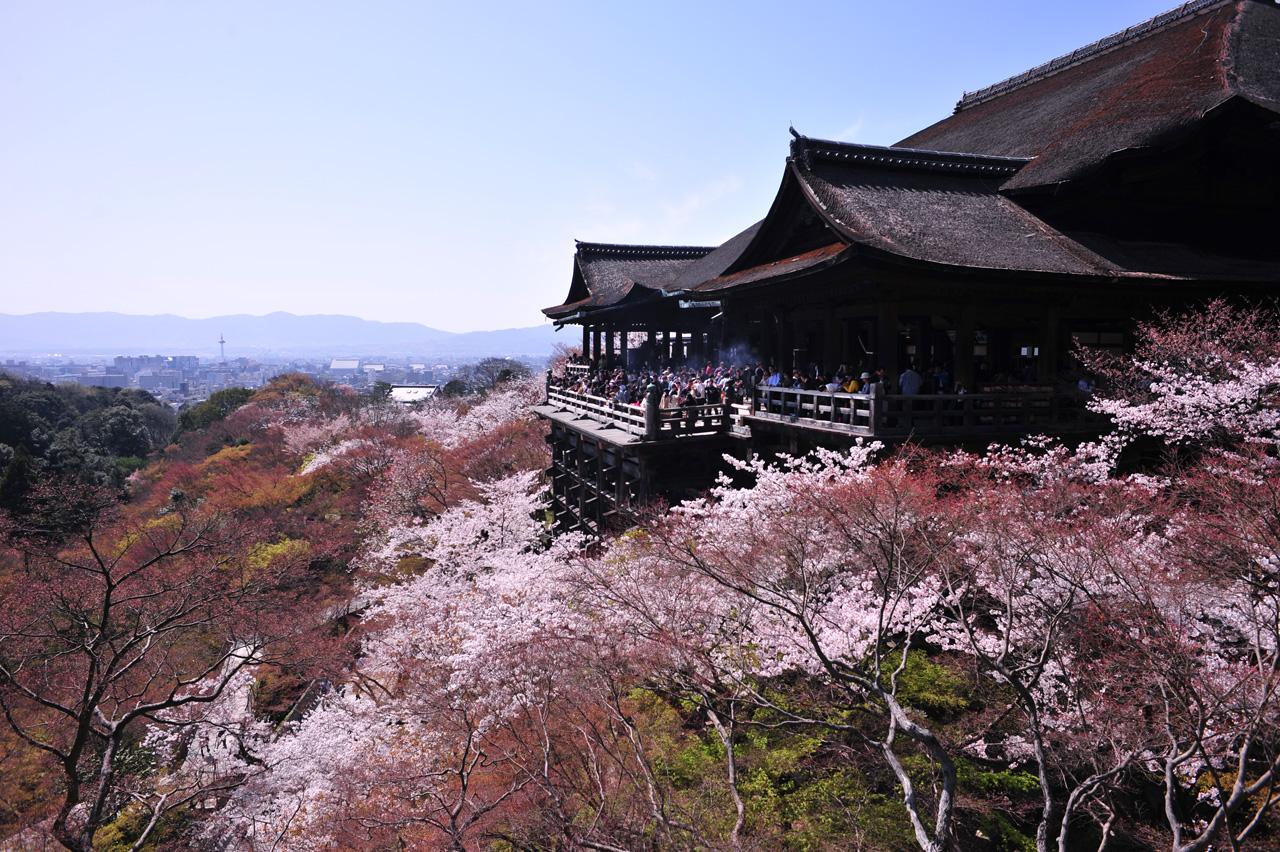 みんなで楽しめる!おすすめの国内卒業旅行先と費用!【京都】
