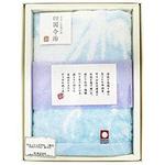 タオルギフト 今治タオル 富士山 ハンドタオル 1枚入(34×35cm)