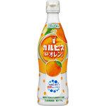 「カルピス」手摘みオレンジ 470mL