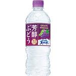 芳醇ぶどう&サントリー天然水冷凍兼用 540mL