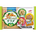 3種lunchサラダ 100g