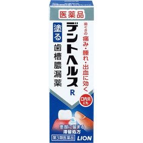 デントヘルスR 10g [第3類医薬品]