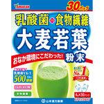 乳酸菌 大麦若葉(徳用) 120g(4g×30パック)