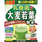 乳酸菌+大麦若葉粉末 240g(4g×60パック)