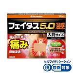 ★フェイタス5.0温感大判サイズ 14枚 [第2類医薬品]