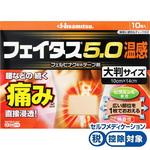 ★フェイタス5.0温感大判サイズ 10枚 [第2類医薬品]