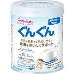 和光堂 フォローアップミルク ぐんぐん 小缶 300g