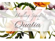 Healing Space Qualiaの画像