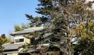 """青年海外協力隊 """"世界一幸福な国""""フィジーで出会った夫婦が運営 子育てや農が中心にある古民家 住みびらのお家ケレケレ"""