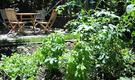【初期費用無料キャンペーン実施中】木々に囲まれた菜園とハンモックのある一軒家シェアハウス@田園都市線 鷺沼(渋谷まで18分)