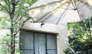 木々に囲まれた菜園とハンモックのある一軒家シェアハウス@田園都市線 鷺沼(渋谷まで18分)