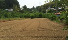 【小田急線 鶴川駅】新宿から30分の農業体験シェアハウス