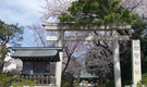 【女性限定】国際交流!日本人&留学生で作る「住める・学べるシェアハウス」!【社会人歓迎】