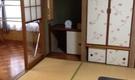 広島で保護猫と楽しく暮らしましょう(女性専用)