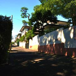 井の頭公園の前の菜園生活【吉祥寺はなれ 井の頭ファーム】