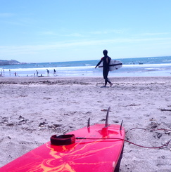 海を分かち合い、サーフボードをシェアする、サーファーズハウス!