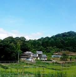 「九陽」- 長崎県と佐賀県のあいだ。小さな町で、海と緑と野菜のあるくらし -