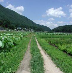 篠山市の女性専用シェアハウスで農ある暮らしをしてみませんか?