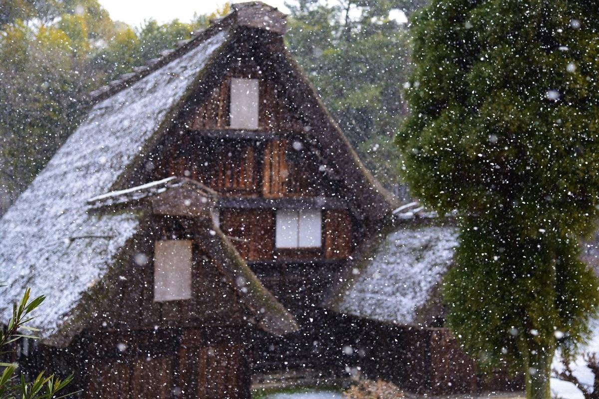 hattori-ryokuti-park.5.jpg