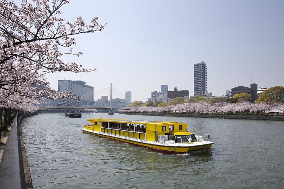 sakura-cruise-rakugoka1.jpeg