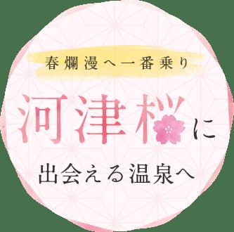 春爛漫へ一番乗り河津桜に出会える温泉へ