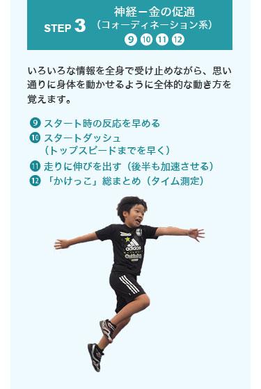 神経-金の促通(コォーディネーション系)