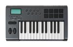 20151201_viola_swam_keyboard