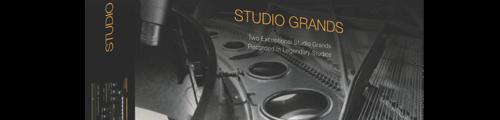 20170511_ivory_studio-grands_500_tiny