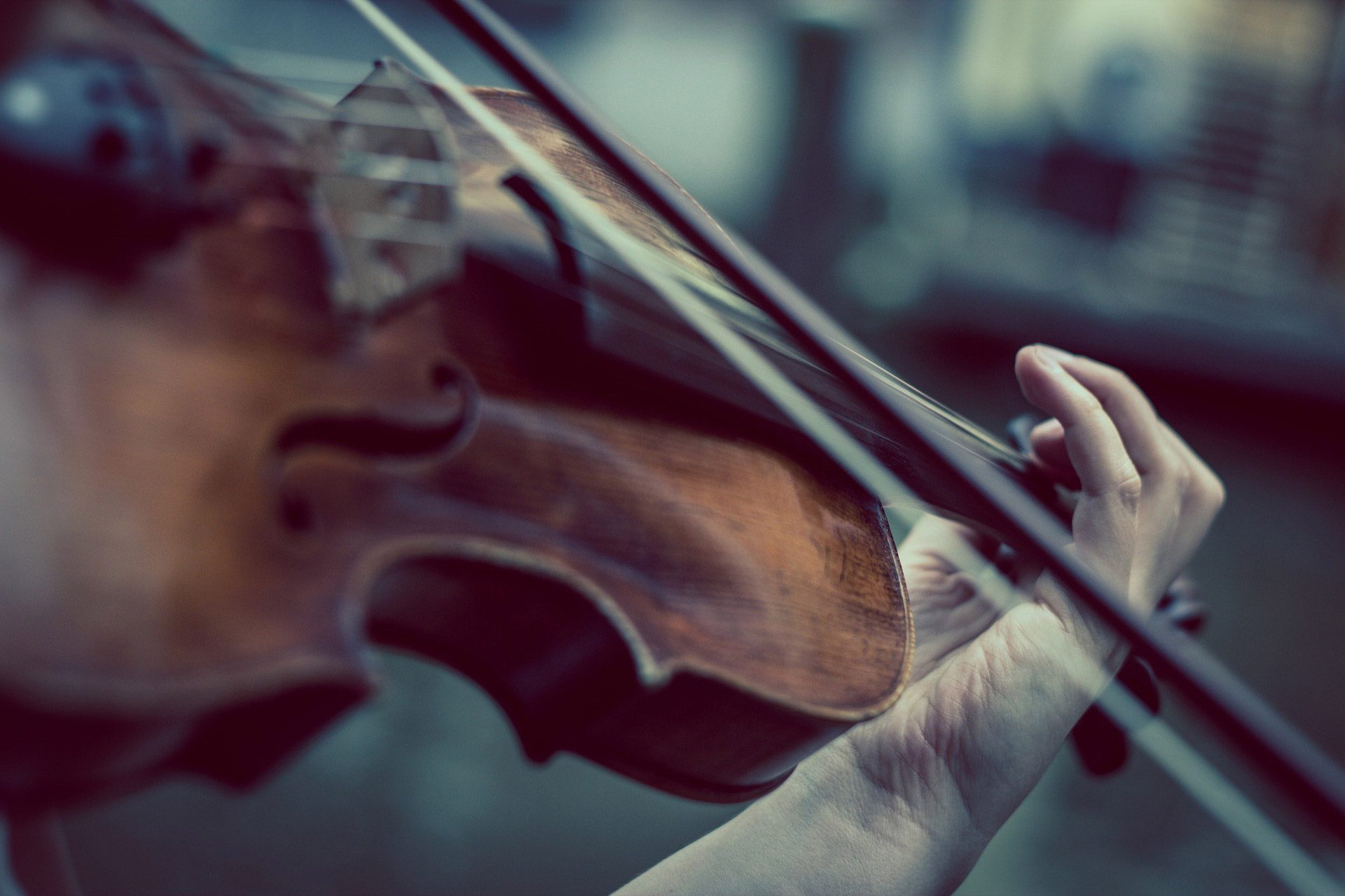 20180921_swam_header-violin-1920x1280